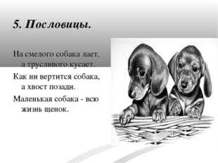 5. Пословицы. На смелого собака лает, а трусливого кусает. Как ни вертится со