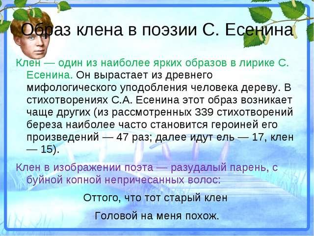 Образ клена в поэзии С. Есенина Клен — один из наиболее ярких образов в лирик...