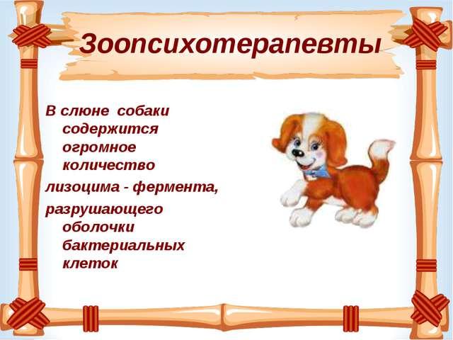 Зоопсихотерапевты В слюне собаки содержится огромное количество лизоцима - ф...