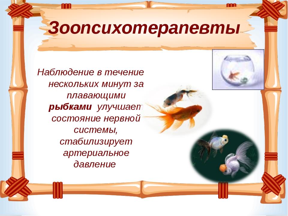 Зоопсихотерапевты Наблюдение в течение нескольких минут за плавающими рыбками...