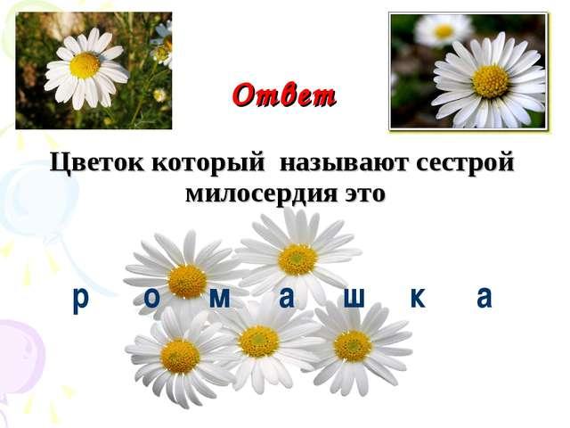 Ответ Цветок который называют сестрой милосердия это р о м а шка
