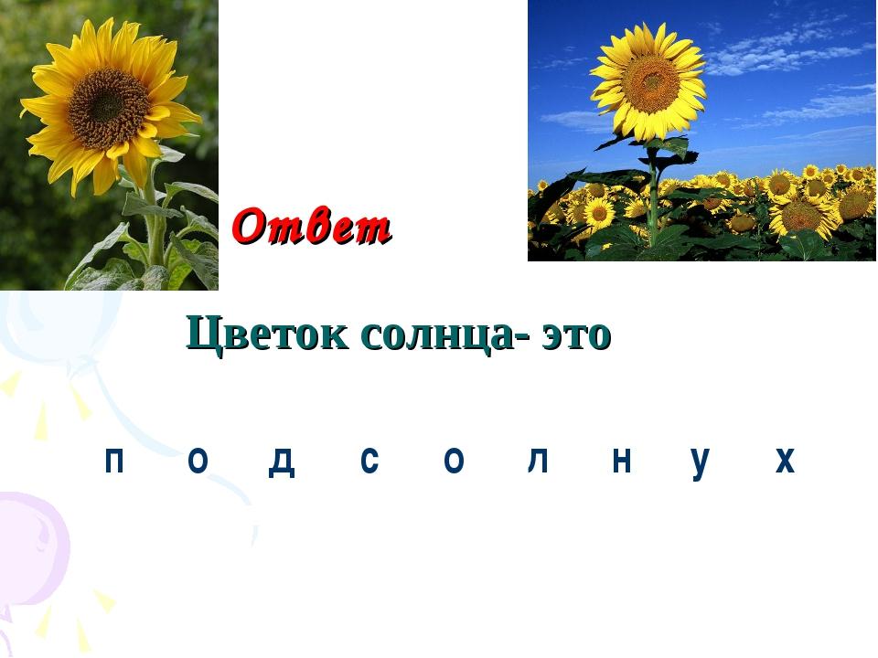 Ответ Цветок солнца- это под с о л нух