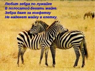 Любит зебра по лужайке В полосатой бегать майке. Зебра даже за конфетку Не на