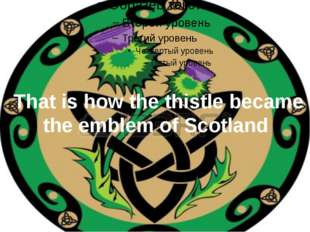 That is how the thistle became the emblem of Scotland