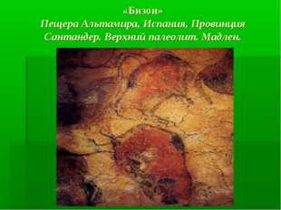 «Бизон» Пещера Альтамира, Испания, Провинция Сантандер. Верхний палеолит. Мад