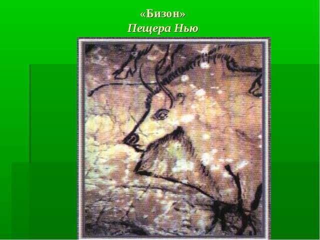 «Бизон» Пещера Нью