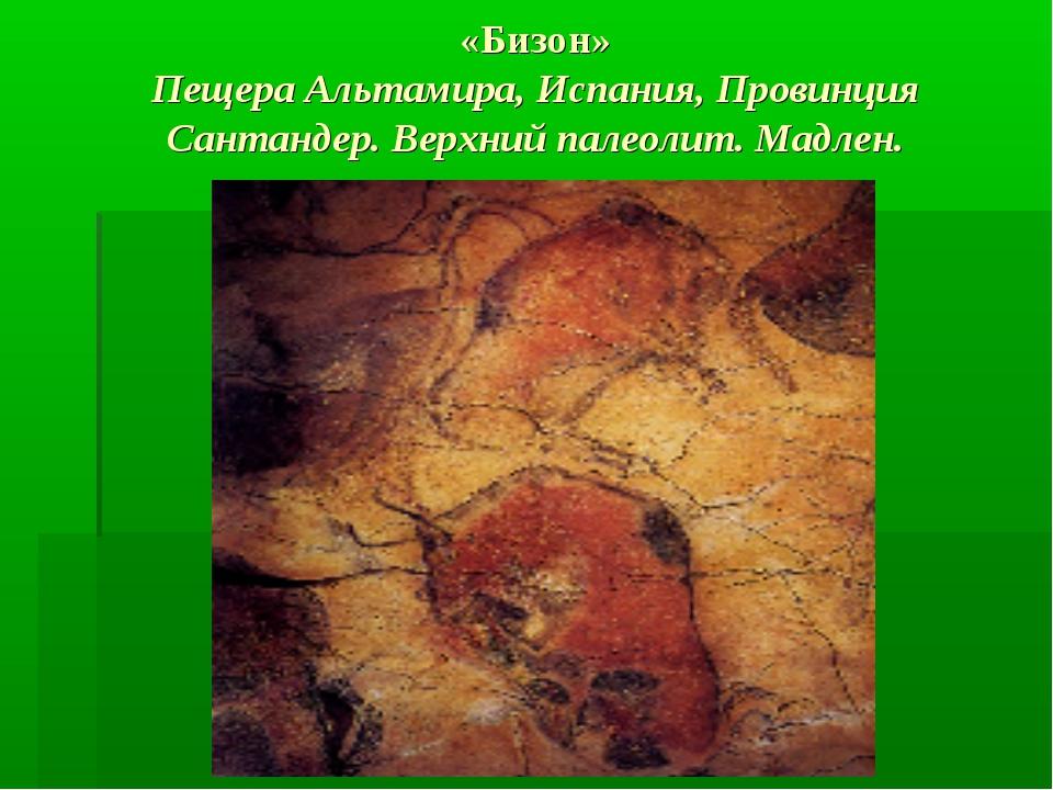 «Бизон» Пещера Альтамира, Испания, Провинция Сантандер. Верхний палеолит. Мад...
