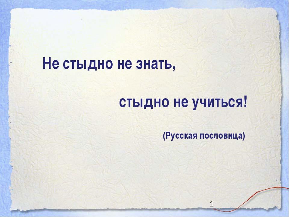 Не стыдно не знать, стыдно не учиться! (Русская пословица)