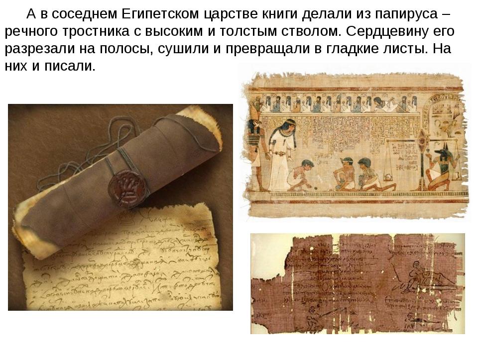 А в соседнем Египетском царстве книги делали из папируса – речного тростника...