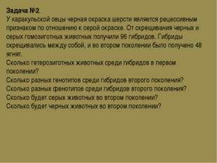 Задача №2. У каракульской овцы черная окраска шерсти является рецессивным при