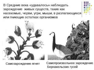 В Средние века «удавалось» наблюдать зарождение живых существ, таких как насе