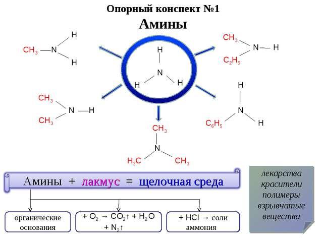 Опорный конспект №1 Амины N H H H CH3 N H H H H H H CH3 CH3 H3C CH3 CH3 CH3 N...