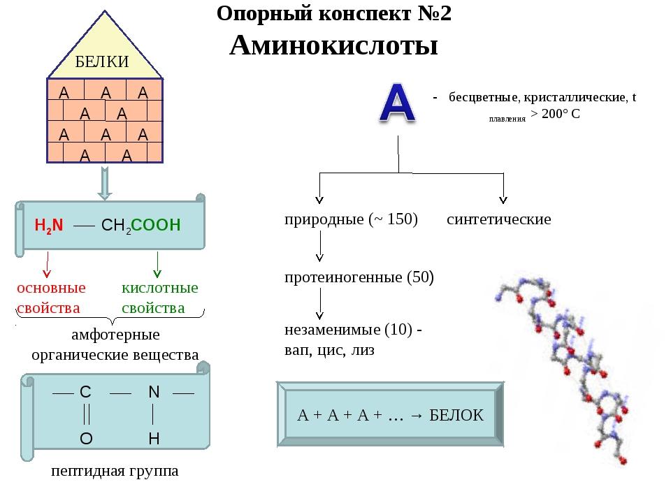 Опорный конспект №2 Аминокислоты БЕЛКИ А А А А А А А А А А H2N CH2COOH основн...