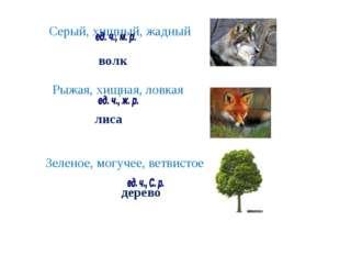 Серый, хищный, жадный волк Рыжая, хищная, ловкая лиса Зеленое, могучее, ветв