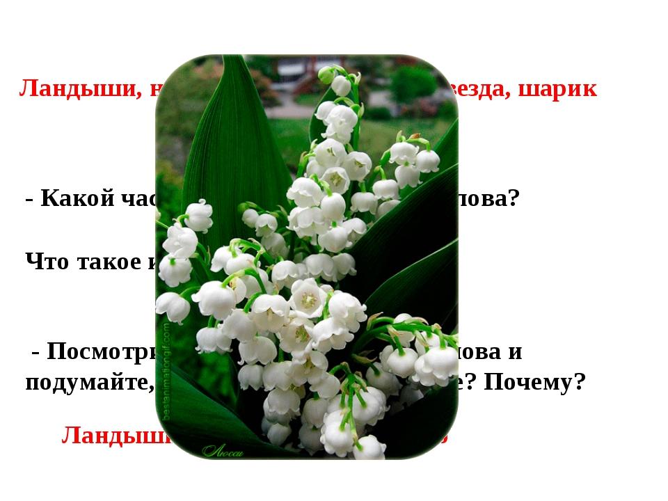 Ландыши, небо, муравей, подруга, звезда, шарик - Какой частью речи являются э...