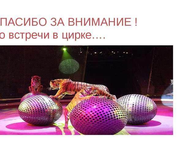 СПАСИБО ЗА ВНИМАНИЕ ! До встречи в цирке….