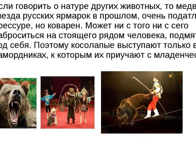 Если говорить о натуре других животных, то медведь, звезда русских ярмарок в...