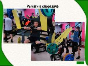 Рычаги в спортзале