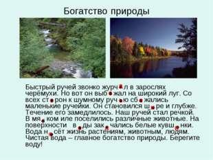 Богатство природы Быстрый ручей звонко журч л в зарослях черёмухи. Но вот он