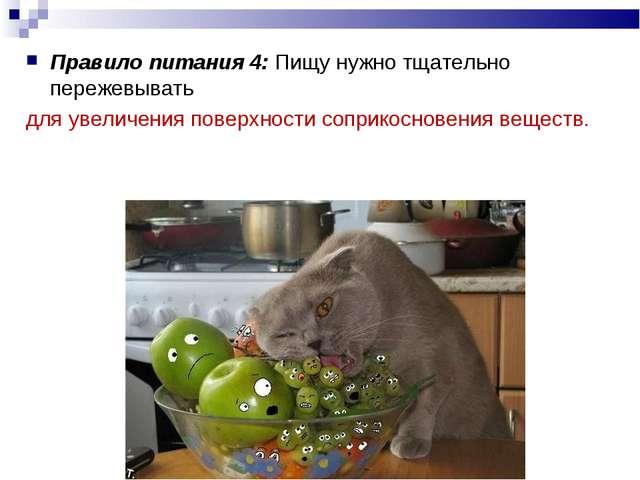 Правило питания 4: Пищу нужно тщательно пережевывать для увеличения поверхнос...