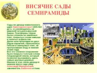 ВИСЯЧИЕ САДЫ СЕМИРАМИДЫ Сады во дворце вавилонского царя Навуходоносора II (6