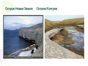 Остров Новая Земля Остров Колгуев