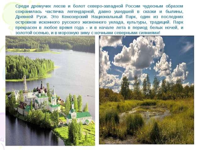 Среди дремучих лесов и болот северо-западной России чудесным образом сохранил...
