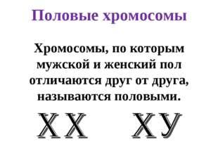 Половые хромосомы Хромосомы, по которым мужской и женский пол отличаются друг