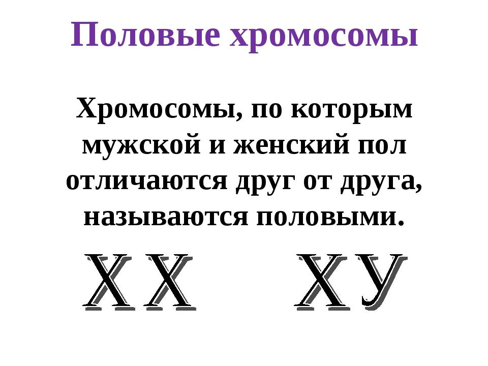 Половые хромосомы Хромосомы, по которым мужской и женский пол отличаются друг...
