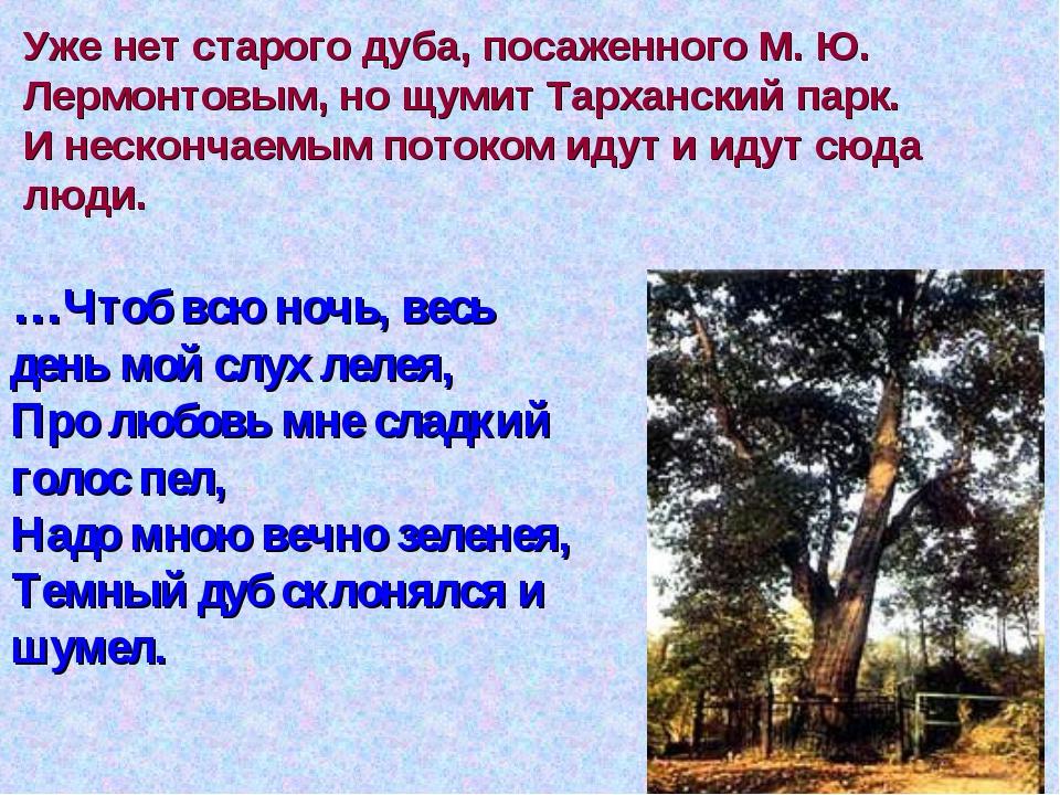 Уже нет старого дуба, посаженного М. Ю. Лермонтовым, но щумит Тарханский парк...
