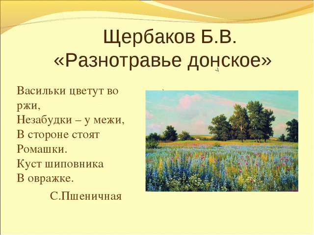 Щербаков Б.В. «Разнотравье донское» Васильки цветут во ржи, Незабудки – у м...