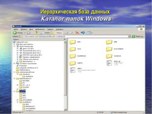 Иерархическая база данных Каталог папок Windows