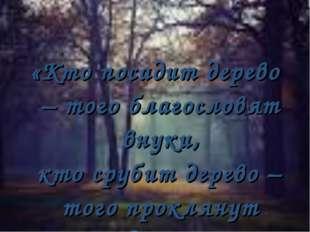 «Кто посадит дерево – того благословят внуки, кто срубит дерево – того прокл