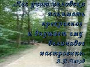 «Лес учит человека понимать прекрасное и внушает ему величавое настроение» А.