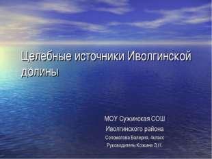 Целебные источники Иволгинской долины МОУ Сужинская СОШ Иволгинского района С