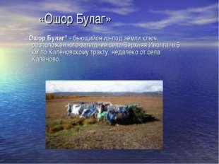"«Ошор Булаг» ""Ошор Булаг""- бьющийся из-под земли ключ, расположен юго-западн"