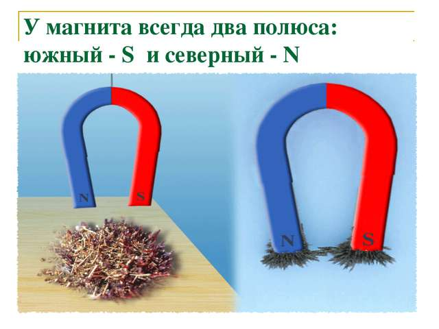 У магнита всегда два полюса: южный - S и северный - N