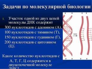 Задачи по молекулярной биологии Участок одной из двух цепей молекулы ДНК соде