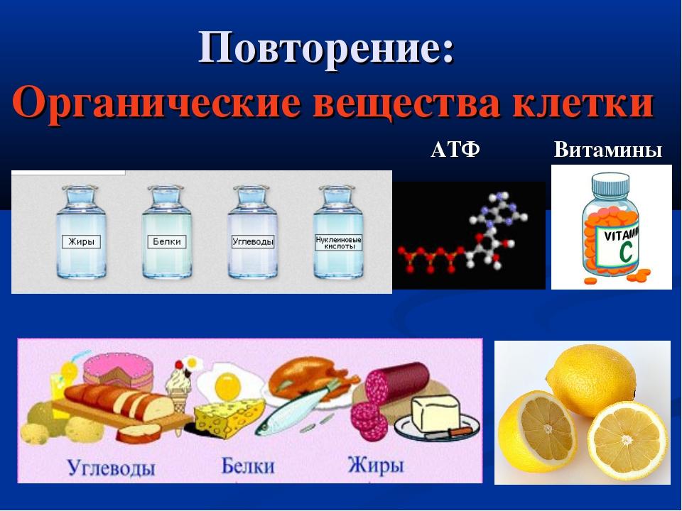 Повторение: Органические вещества клетки АТФ Витамины
