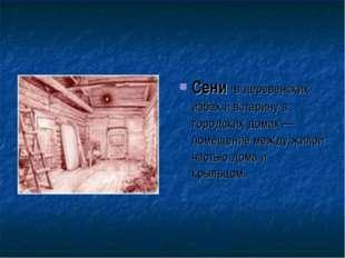Сени -в деревенских избах и встарину в городских домах — помещение между жило