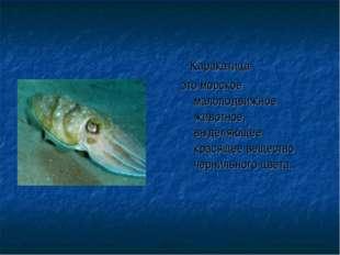 Каракатица это морское малоподвижное животное, выделяющее красящее вещество