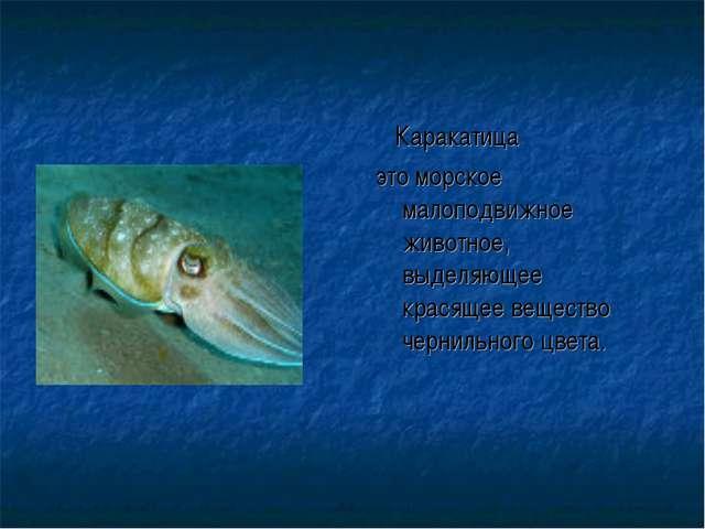 Каракатица это морское малоподвижное животное, выделяющее красящее вещество...