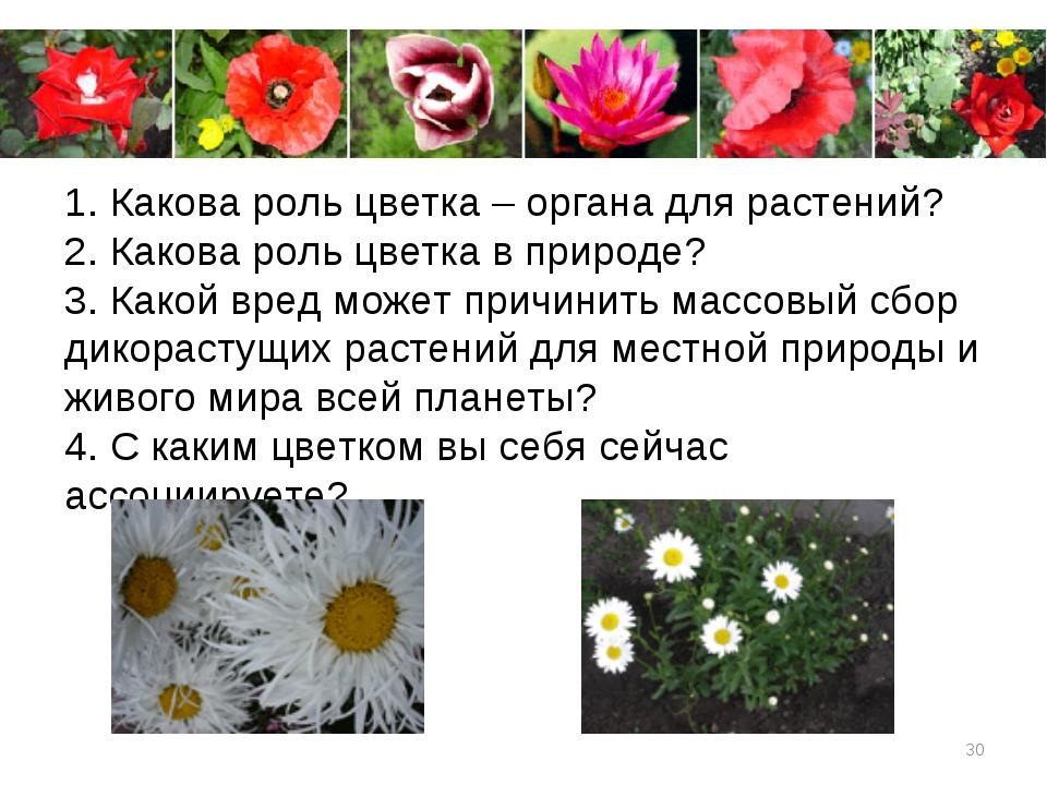 * 1. Какова роль цветка – органа для растений? 2. Какова роль цветка в природ...