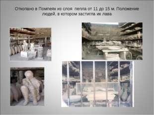 Откопано в Помпеях из слоя пепла от 11 до 15 м. Положение людей, в котором за