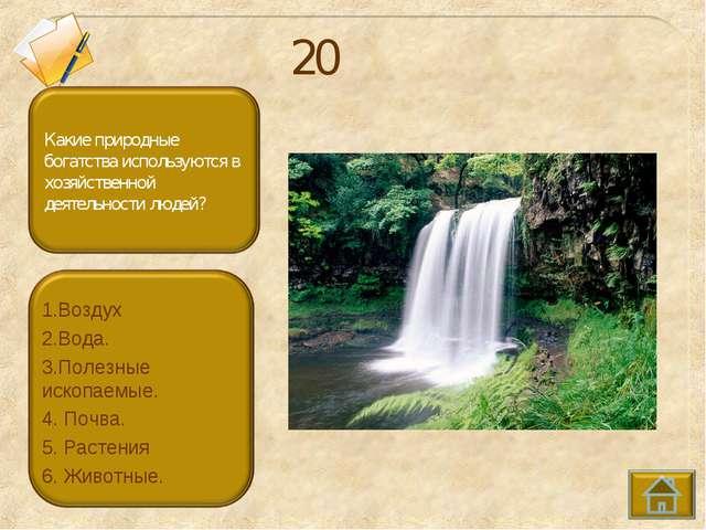 20 1.Воздух 2.Вода. 3.Полезные ископаемые. 4. Почва. 5. Растения 6. Животные.