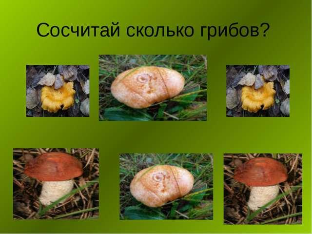 Сосчитай сколько грибов?