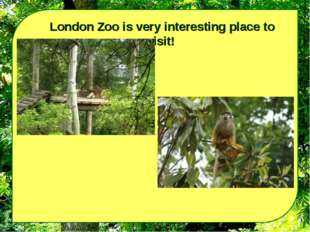 London Zoo is very interesting place to visit!