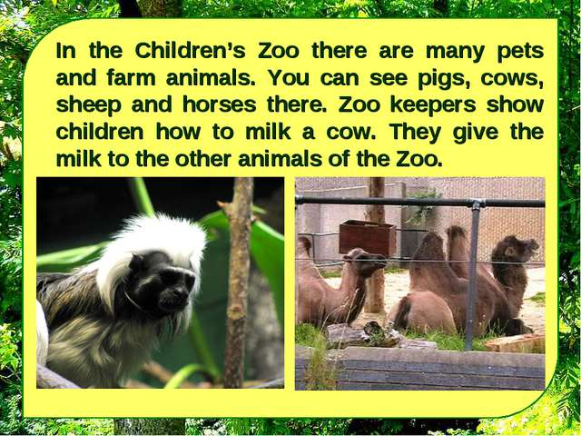 In the Children's Zoo there are many pets and farm animals. You can see pigs,...