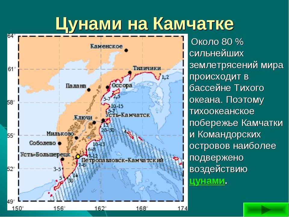 Цунами на Камчатке Около 80 % сильнейших землетрясений мира происходит в басс...