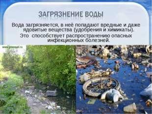 Вода загрязняется, в неё попадают вредные и даже ядовитые вещества (удобрения